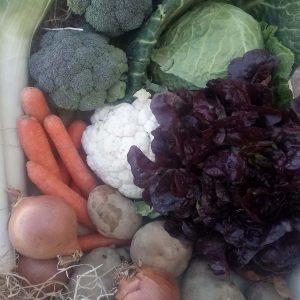 Cesta grande de verduras de temporada