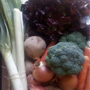 Cesta pequeña de verduras de temporada
