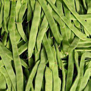 Judía Verde PlanaEcológica