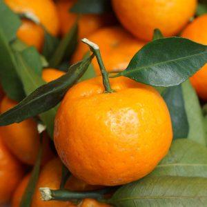 Mandarina Ecológica Granel